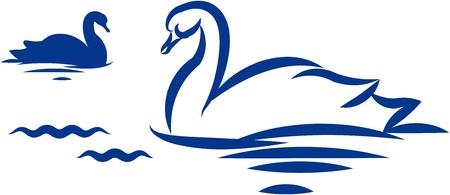swans: Swans. Vector illustration Illustration