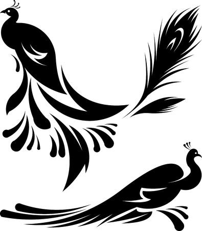 pavo real: Pavos reales hermosos ilustraci�n de vectores