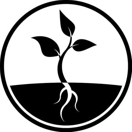 raices de plantas: Planta icono brote vector Vectores