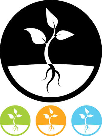 arbol raices: Planta icono brote vector Vectores