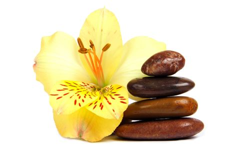 Composition of SPA elements: stone cairn and flower.