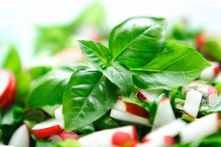 Bowl of fresh vegetables salat: radish, salat, chive and basil.