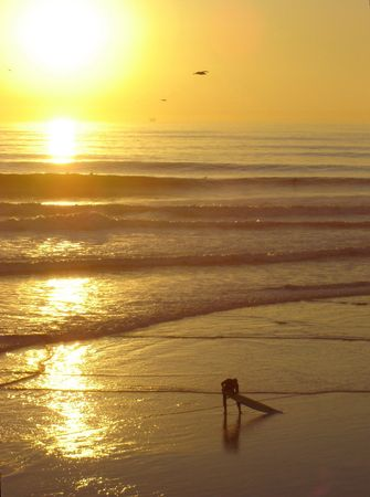 Huntington beach, California Stock Photo