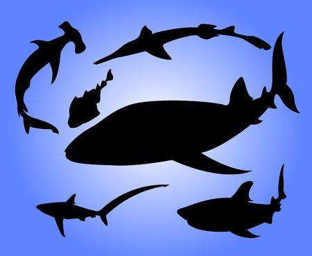 Siluetas de los tiburones Foto de archivo - 532937