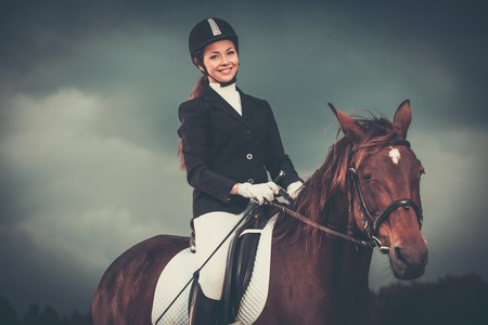 equitation: Beautiful girl sitting on a horse outdoors against moody sky