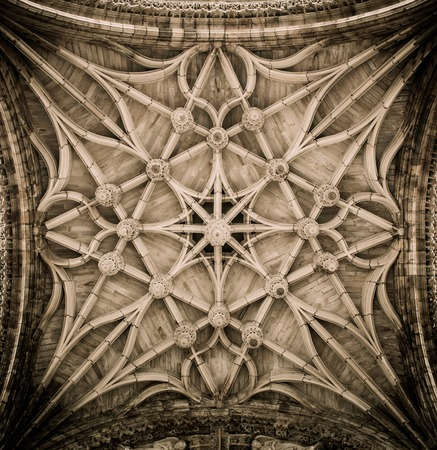 celling: Celling decoration of Albi Cathedral, France