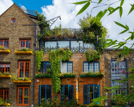 old house facade house: Building facade full of colourful plants
