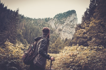 Man with hiking equipment walking in mouton forest photo