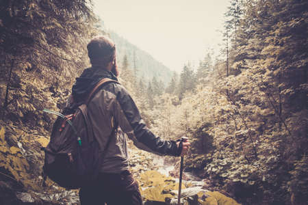 Man with hiking equipment walking in mouton forest Stock Photo