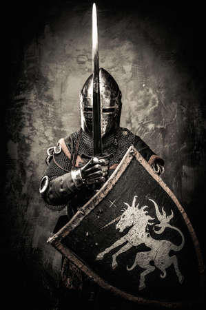 medieval knight: Medieval knight against stone wall