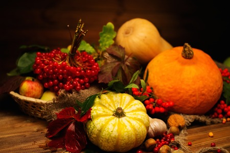harvest basket: Thanksgiving day autumnal still life