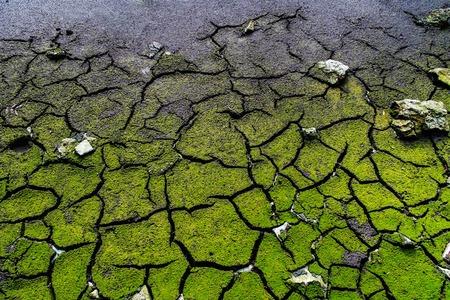 soil pollution: Cracked dead soil