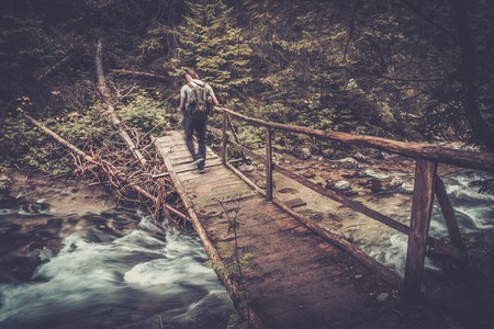 hiking stick: Hiker with hiking poles  walking over wooden bridge in a forest