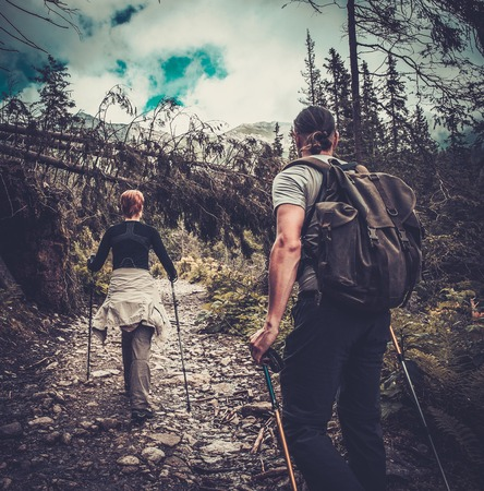 trails: Couple with hiking poles walking in a forest