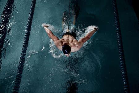 nadar: Deportista nada en una piscina Foto de archivo