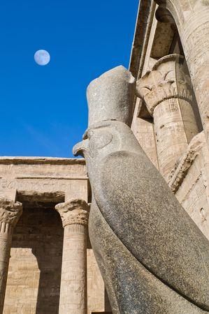 horus: Halc�n dios Horus y Luna completa por la ma�ana en el templo de Edfu, Egipto
