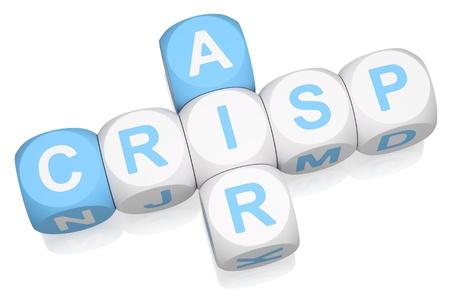 crisp: Crisp Air crossword on white background 3d render
