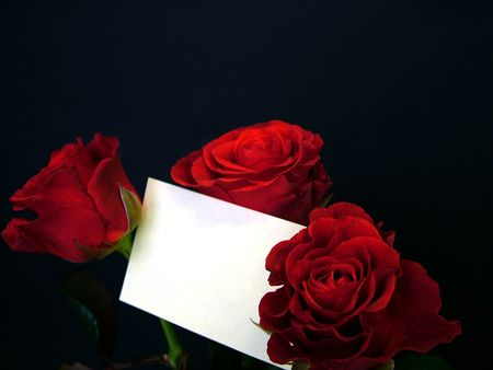 three wishes: Roses whit empty gift card Stock Photo