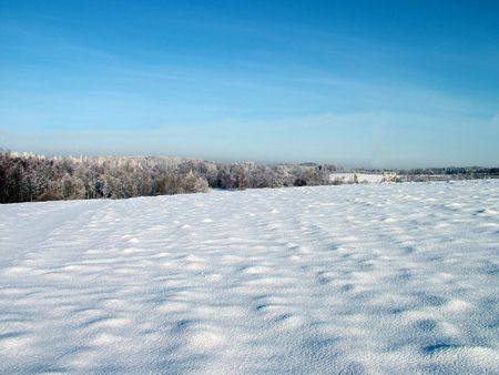 Lithuania field in winter 1