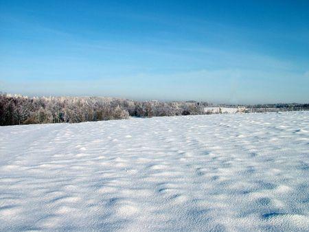 snowbank: Lithuania field in winter 1