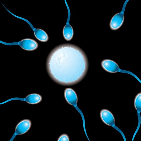 penetrate: sperm heading for the egg in an abstract image background
