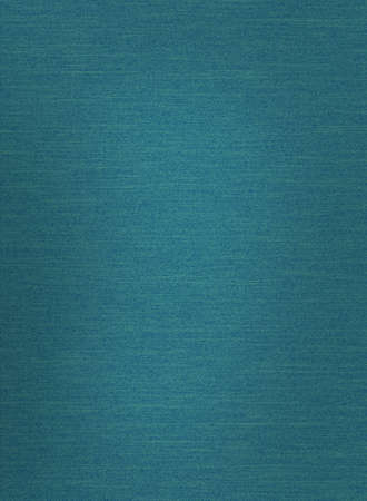 jade: Close up of denim material that would make an ideal background LANG_EVOIMAGES