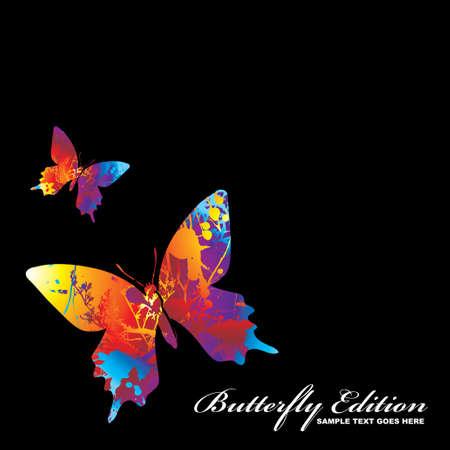 farfalla nera: due illustrato colorato butterflys su sfondo nero Vettoriali