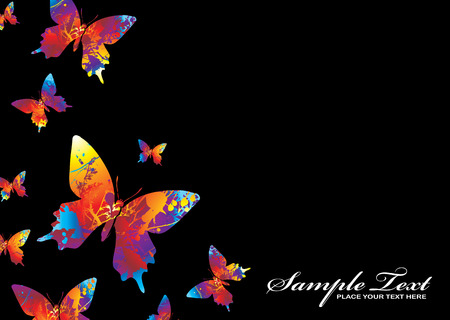colourful collection of butterflys on a black background Stock Vector - 3644552
