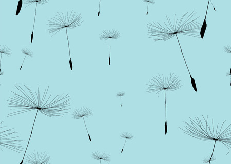black seeds: dandelion silhouette background in blue and black