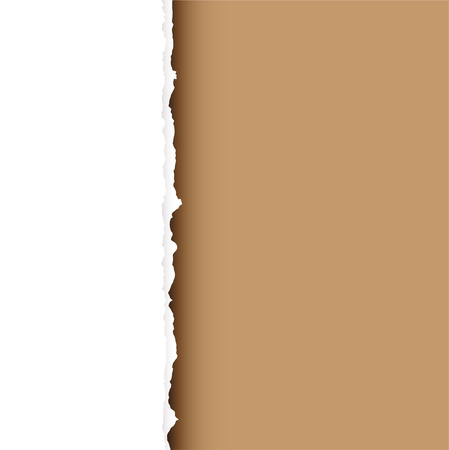 torned: Piece of white paper with torn edge and brown background with shadow