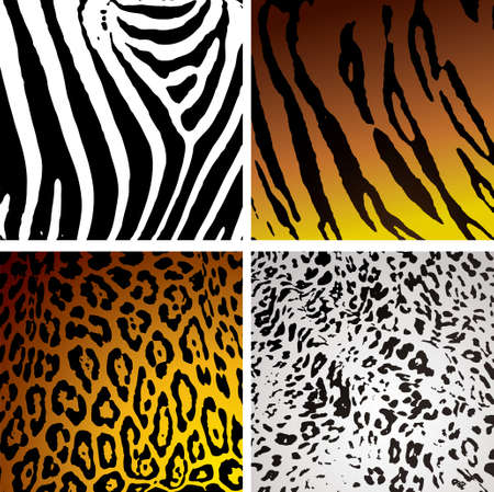 leopard print: Animal skin backgrounds with different camouflage textures and patterns