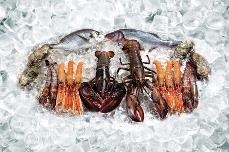 marine crustaceans: Some seafood on ice