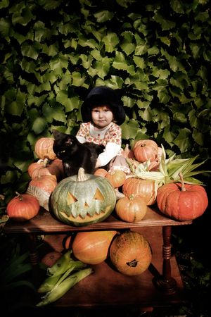 old-styled photo of little girl in hat with pumpkins and black cat. Special toned photo fx, vignette added, copy space on top photo
