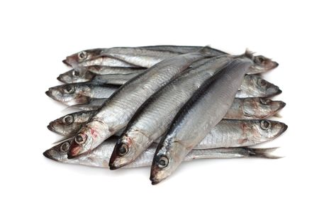 anchovy: Anchovy