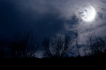crescent: autumn night forest alight with bright moon in clouds Stock Photo