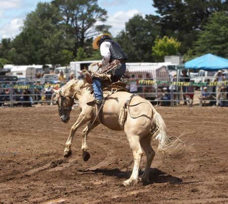 bucking horse: Cowboy rider on a bucking horse