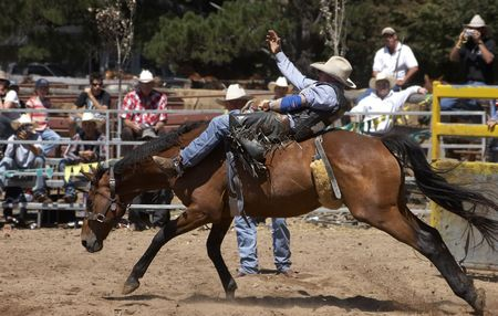 arena rodeo: Rodeo rider on a bucking horse