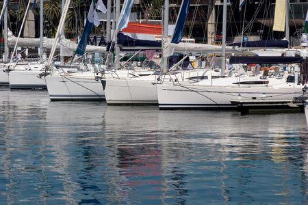 moored: Moored yachts in a marina