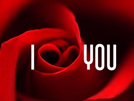 andamp: Valentine%uFFFDs card with andamp,laquo,I love youandamp,raquo, message