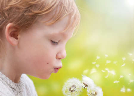 dandelion seed: Young blond kid in the meadow blowing wishes on dandelion seed