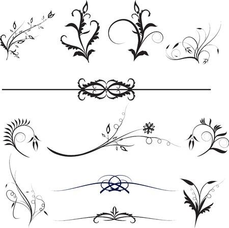 ellements: Floral design ellements for design work on white background