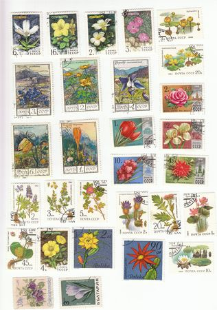 philatelic: Collectible stamps from Russia. Set with herbs and flowers