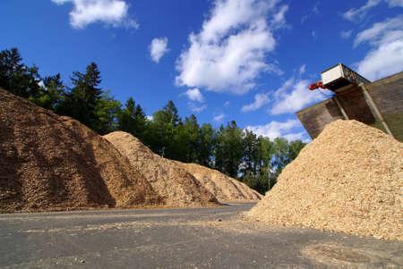biomasa: almacenamiento de combustible de BIO en la planta de energ�a