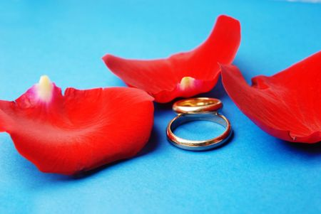 roseleaf: Close-up photo of wedding rings and rose petals on a blue background