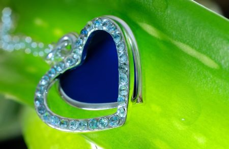 Extremely close-up view of the jewelry on the fresh plant photo