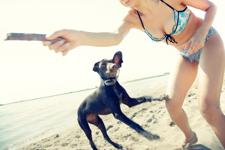 cur: Happy woman in vacation playing with her dog at the summer beach. Artistic colors added
