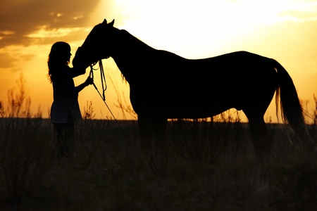 Silhouette of the woman and horse training during sunset photo
