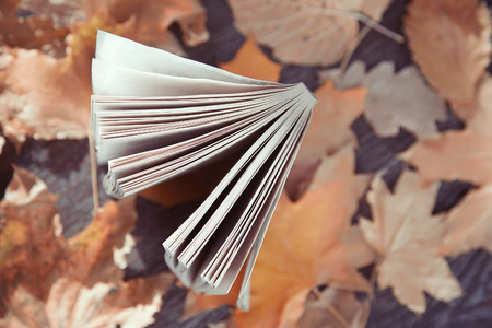 herbal knowledge: Close-up view on a book with autumn leaves