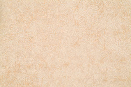 Beige fine leather texture background sample photo