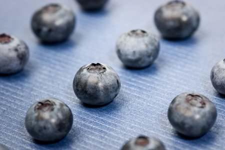 metallized: Group of whortleberries on a blue metallized textured paper background. Shallow depth of field  selective focus